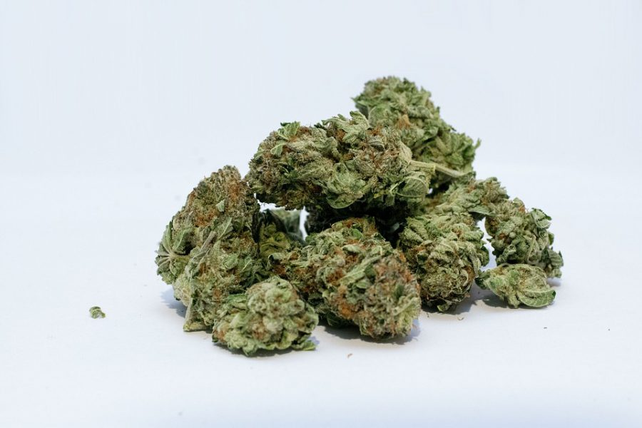 Marijuana Strain-About Us | GLOBAL MARIJUANA STORE